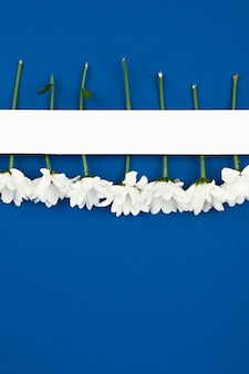 青いスペース2020に白い花で作られた創造的なレイアウト。花で模擬水平紙カード。結婚式。 3月8日