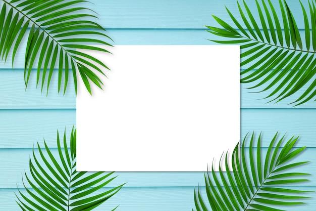 緑のヤシの葉の創造的なレイアウト白い正方形のフレームで背景