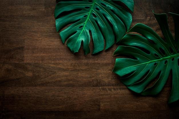 テーブルの木の背景にモンステラの葉の創造的なレイアウト