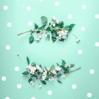 Creative layout with blooming apple tree on a blue background. flat lay. concept - spring minimalism