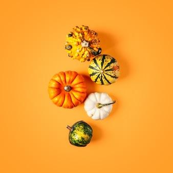 Креативный макет с аранжировкой из тыкв. осенний состав на оранжевом фоне обтравочный контур включен. вид сверху, плоская планировка. элемент дизайна и концепция хэллоуина