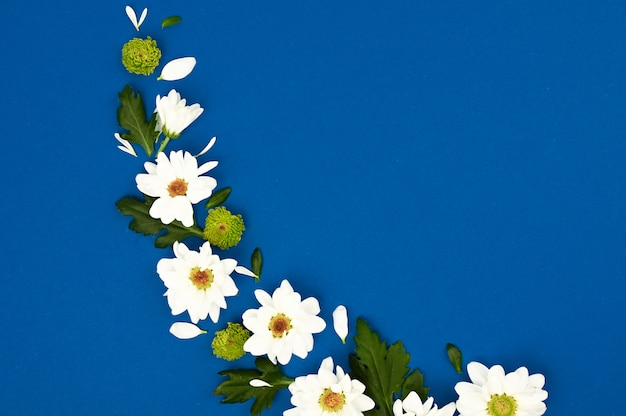 Creative layout with white flowers and green leaves on a blue space. spring concept. flat lay, top view.