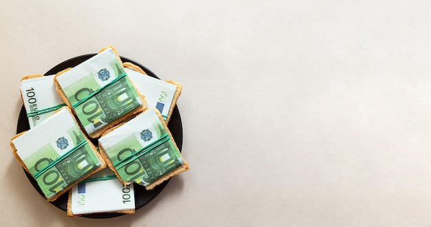 Creative minimalistic composition  a plate of sandwiches made of 100 euro banknotes