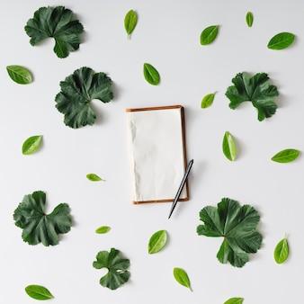古いノートと葉で作られた創造的な自然のパターン