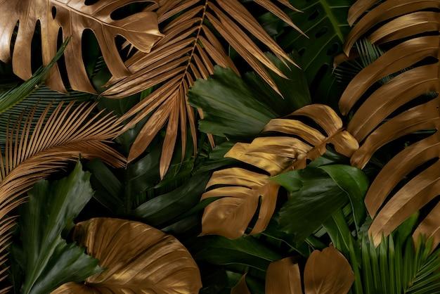 Креативная природа фон золото и зеленый тропический монстера и пальмовые листья минимальный летний абстрак