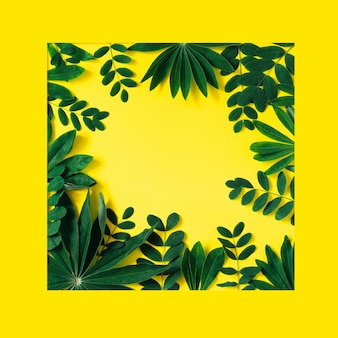 Creative nature frame made of tropical leaves and flowers on  yellow
