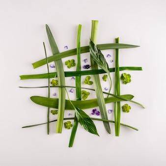 Творческий чистый макет из фиалок и листьев на белом фоне. квадрат. минималистичная весенняя концепция. плоская планировка