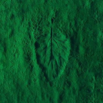 緑色の粉末にクリエイティブなイラクサの葉の印象。