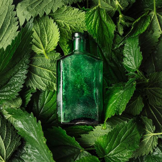 ガラス瓶と創造的なイラクサの葉