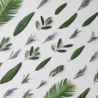 緑の葉と紫の花で作られた創造的なパターン。