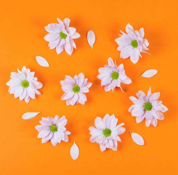 오렌지 배경에 봄 꽃과 함께 창조적 인 패턴입니다.