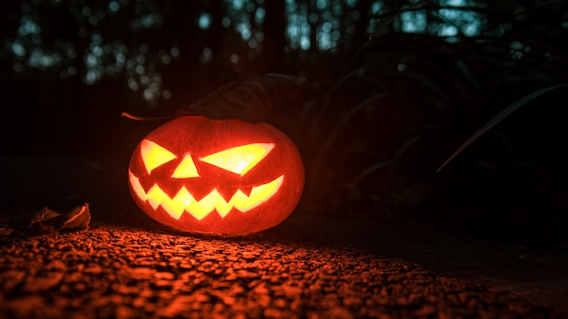 Creative photos of halloween pumpkin lights