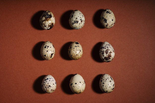 Creative quail egg layout on brown space. quail eggs pattern.