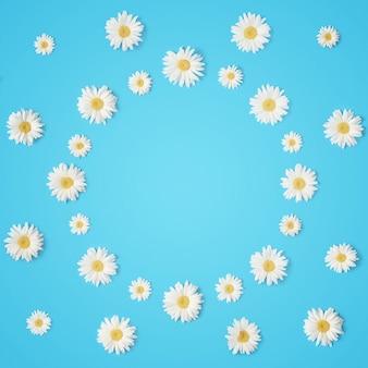 Творческий весенний макет ромашек на синем фоне с копией пространства.