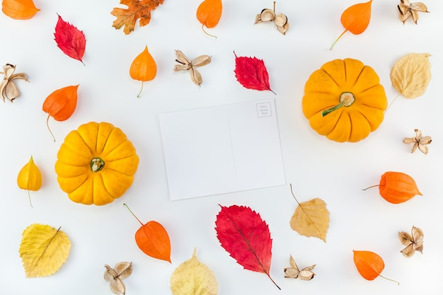 Creative top view flat lay autumn composition. pumpkins dried orange flowers leaves background