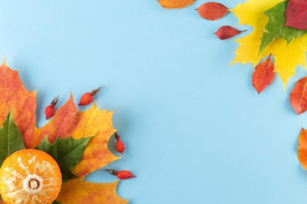 Креативный вид сверху плоской планировки осенней композиции на синем фоне. шаблон баннера осеннего сезона. концепция падения
