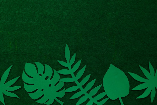 Creative tropical leaves on a green wall view from above. nature concept. abstract table from paper tropical leaves.