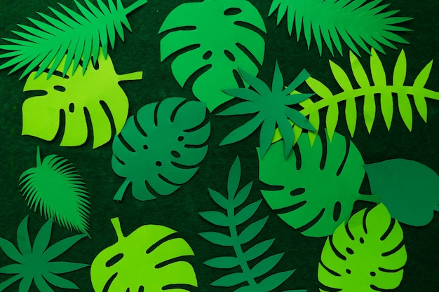 緑の壁に創造的な熱帯の葉。上からの眺め。自然の概念。紙の熱帯の葉からの抽象的なテーブル。