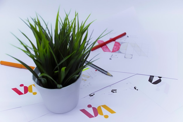 Creative workplace of a graphic designer with a flower in a pot. development of a logo for the company. drawings and sketches on paper in a art studio office.