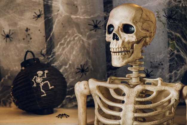 Creepy skeleton of human