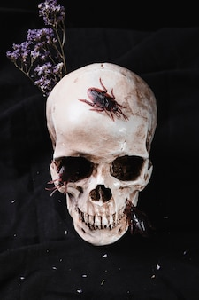 Creepy skulls with roaches and flowers