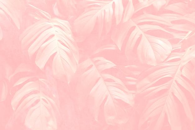 Креп розовый лист монстера узорчатый фон