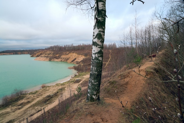 On the crest of the hill there is a path among the trees on the bank of a sand quarry.