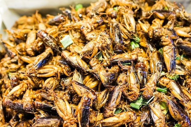 A cricket's fried or fried insect is native thai food. Premium Photo