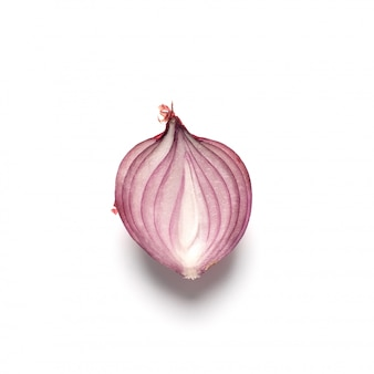 Crimean red sliced onion isolated on white