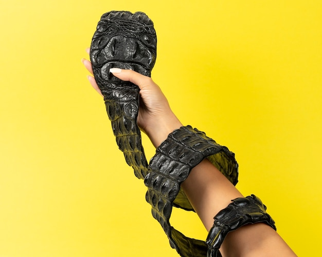 Crocodile leather belt on woman hand