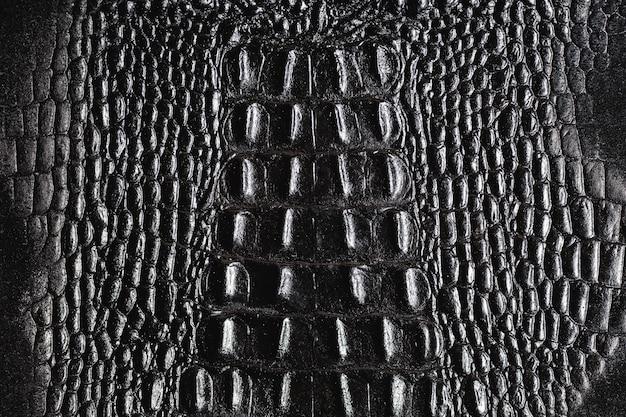 Crocodile skin pattern texture