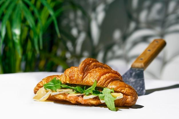 Сэндвич с круассаном с сыром бри, рукколой. жесткий свет. белый фон