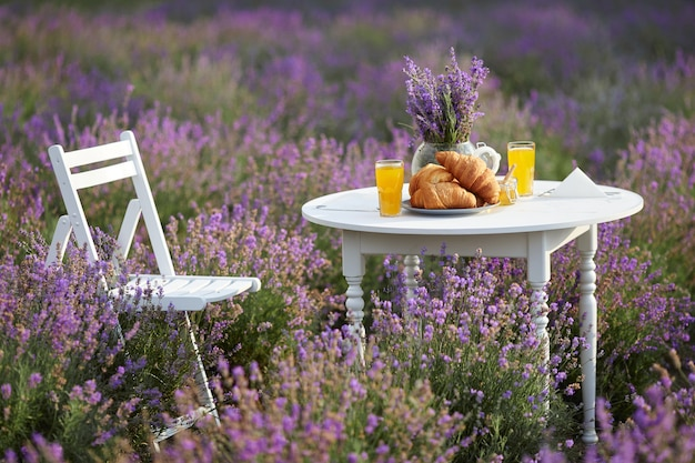 Croissants juice and honey on table in lavender field