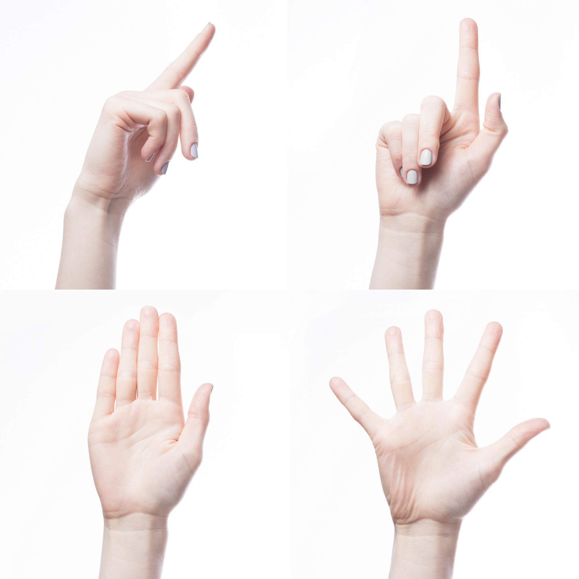 Crop hand gesturing on white background