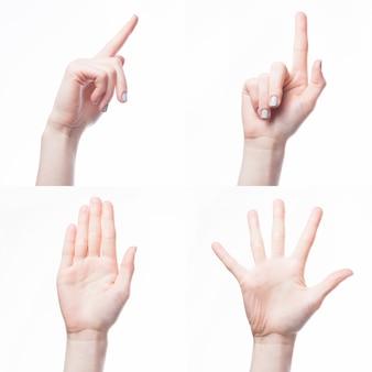 Crop hand gesturing on white background