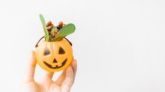 Crop hand holding jack-o-lantern with berries