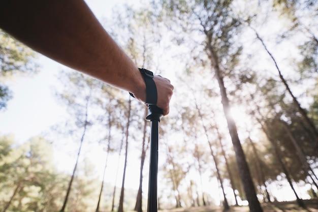 Обрезать руку человека в лесу