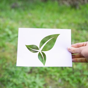 Crop hand with eco leaves symbol