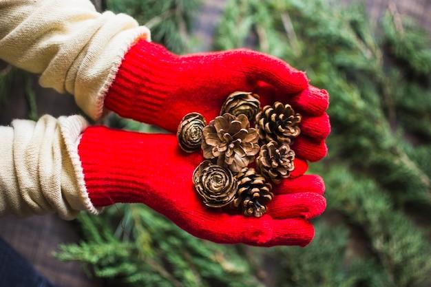 Crop hands in gloves showing conifer cones