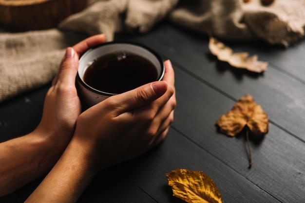 Crop hands holding mug near leaves
