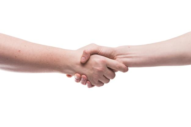 手作業で握手をする