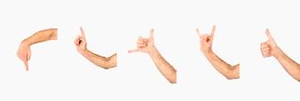 Crop hands with various gestures