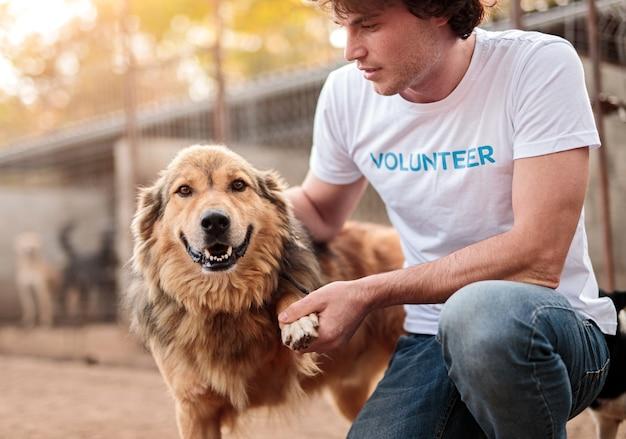動物保護施設の庭でおしりに座っている間、幸せなホームレス犬の足をなでたり振ったりする男性ボランティアを収穫する