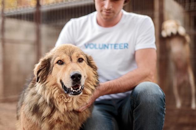 動物保護施設で働いている間、ボランティアのtシャツで陽気なホームレスの犬を愛撫する作物の男