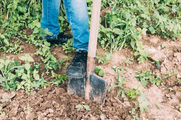 Coltura persona scavando terreno
