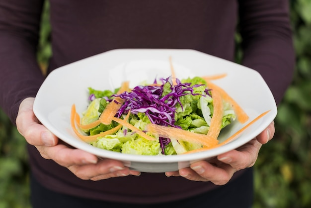 Crop person holding green salad