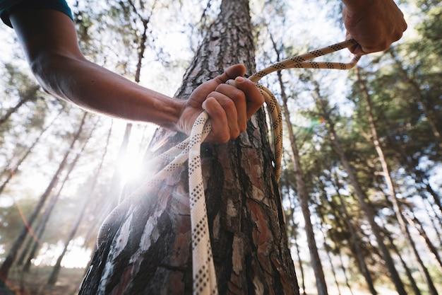 Кадрирующий человек, привязывающий веревку на дереве
