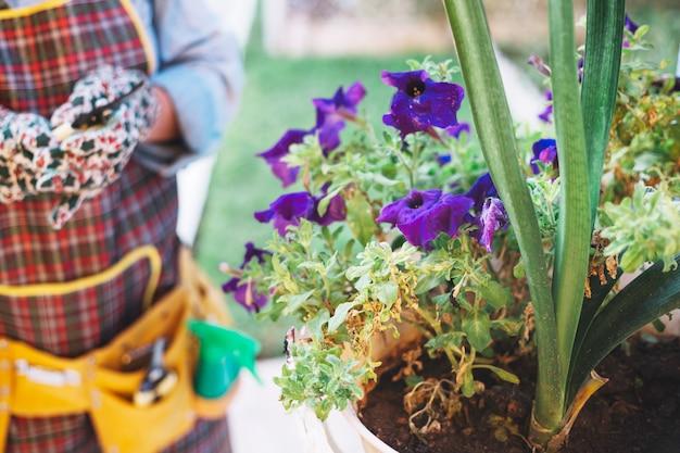 Raccogli la donna vicino alle piante in vaso