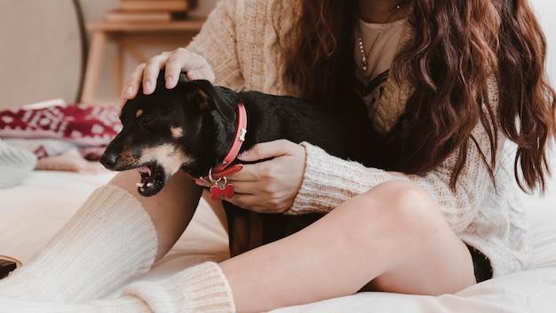 Crop woman petting dog