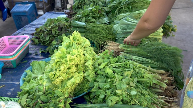 Crop woman selecting bunch of fresh dill from variety of greenery on street market counter